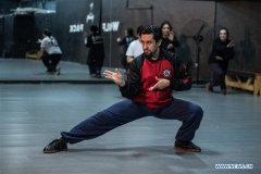 Feature: Chilean kung fu master creates