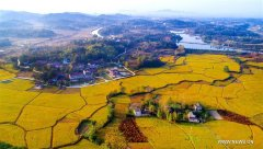 Autumn scenery in east Chinas Anhui